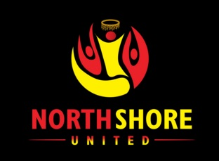 NorthShore United Netball Holiday Clinic